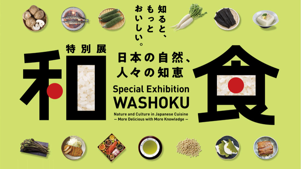 """Washoku"" (tentative title) and Related Projects"